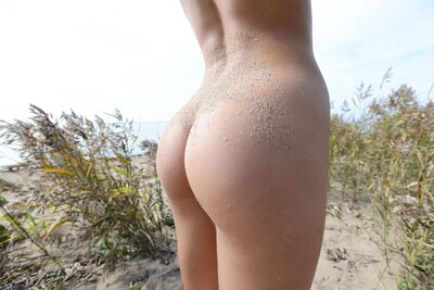 Изображение помечено: MET Art, Brunette, Ass - Butt, Beach, Foxy Di - Nensi B, Senari